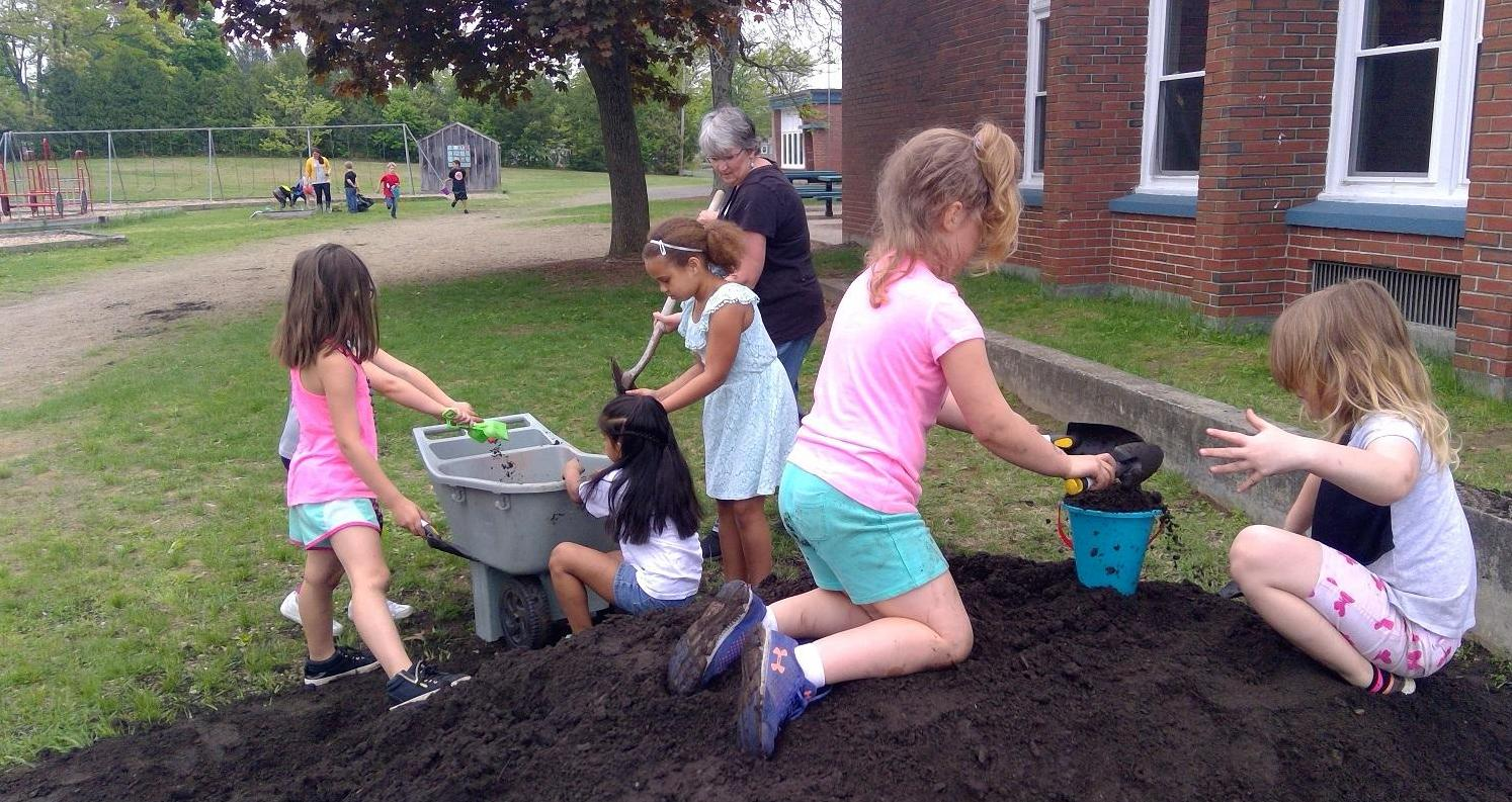 students working together, moving mulch